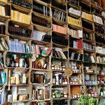 boekenkast vol wijsheid